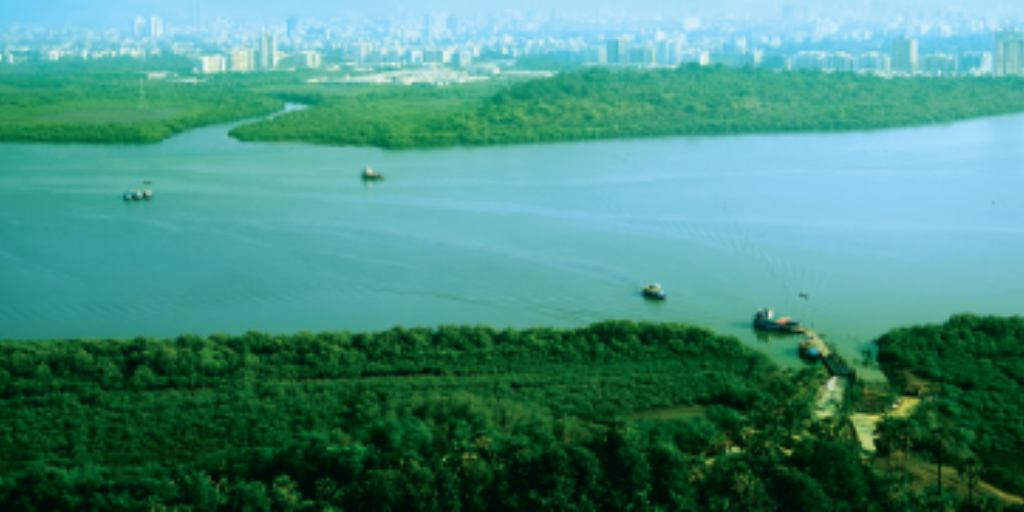 project-photo-gallery2-victoria-54-vaibhav-laxmi-developers-kannamwar-nagar-vikhroli-east-mumbai-maharashtra