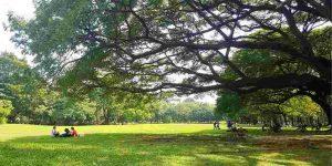 forest-green-amenities-lodha-palava-codename-freedom-lodha-group-shilphata-kalyan-shil-road-thane-maharashtra