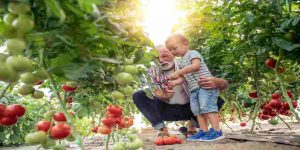 organic-farm-amenities-godrej-emerald-godrej-properties-ghodbunder-road-bhayandar-pada-thane-west-maharashtra