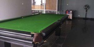 pool-table-amenities-highland-haven-larkins-group-saket-road–thane-west-maharashtra