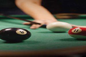 pool-table-amenities-pride-palms-gala-group-larkins-group-kolshet-road–thane-west-maharashtra