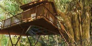 treehouse-amenities-lodha-amara-codename-green-fortune-lodha-group-kolshet-road-thane-west-maharashtra