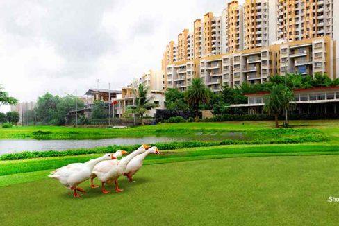 opportunity-lodha-palava-largest-ready-furnished-homes-kalyan-shil-road-dombivali-maharashtra