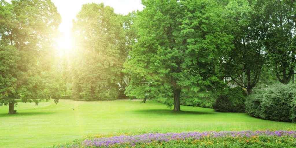 garden-amemities-ritz-vikas-developer-adharwadi-jail-road-kalyan-west-thane-maharashtra
