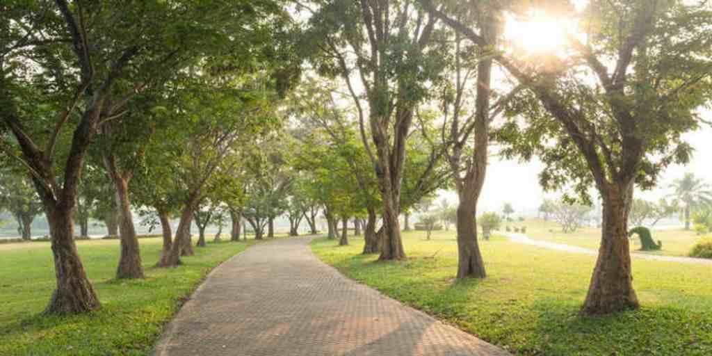 walking-track-amenities-akanksha-sugee-group-dadar-west-mumbai-maharashtra